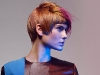 GOLDWELL - COLOR ZOOM'16